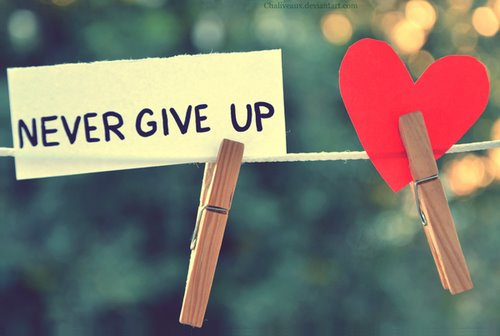 Nikad ne odustaj 8